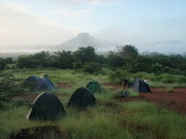 Morning bush camp view