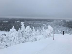 Proper skiing