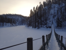 A bridge and frozen lake