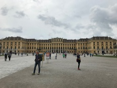 A Viennese Palace