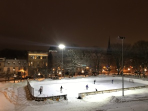 Ice hockey in the park