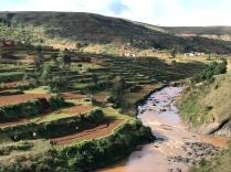The farmed landscape