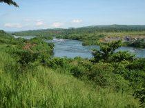 More Nile
