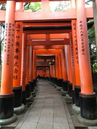 Orange pillars