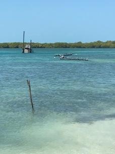 Mangrovey Caye Caulker