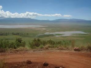 African ponds