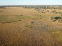 More delta