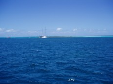 The Great Barrier Reef! Honest!